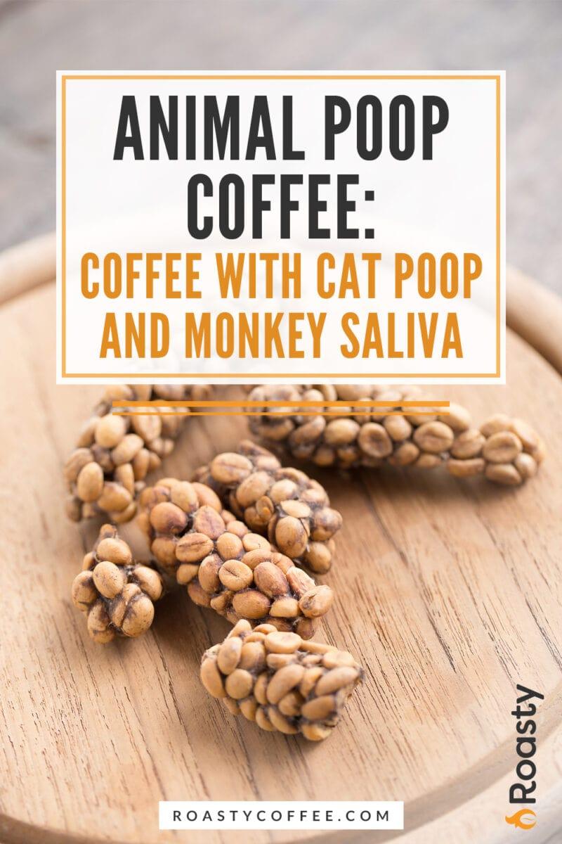 Animal Poop Coffee