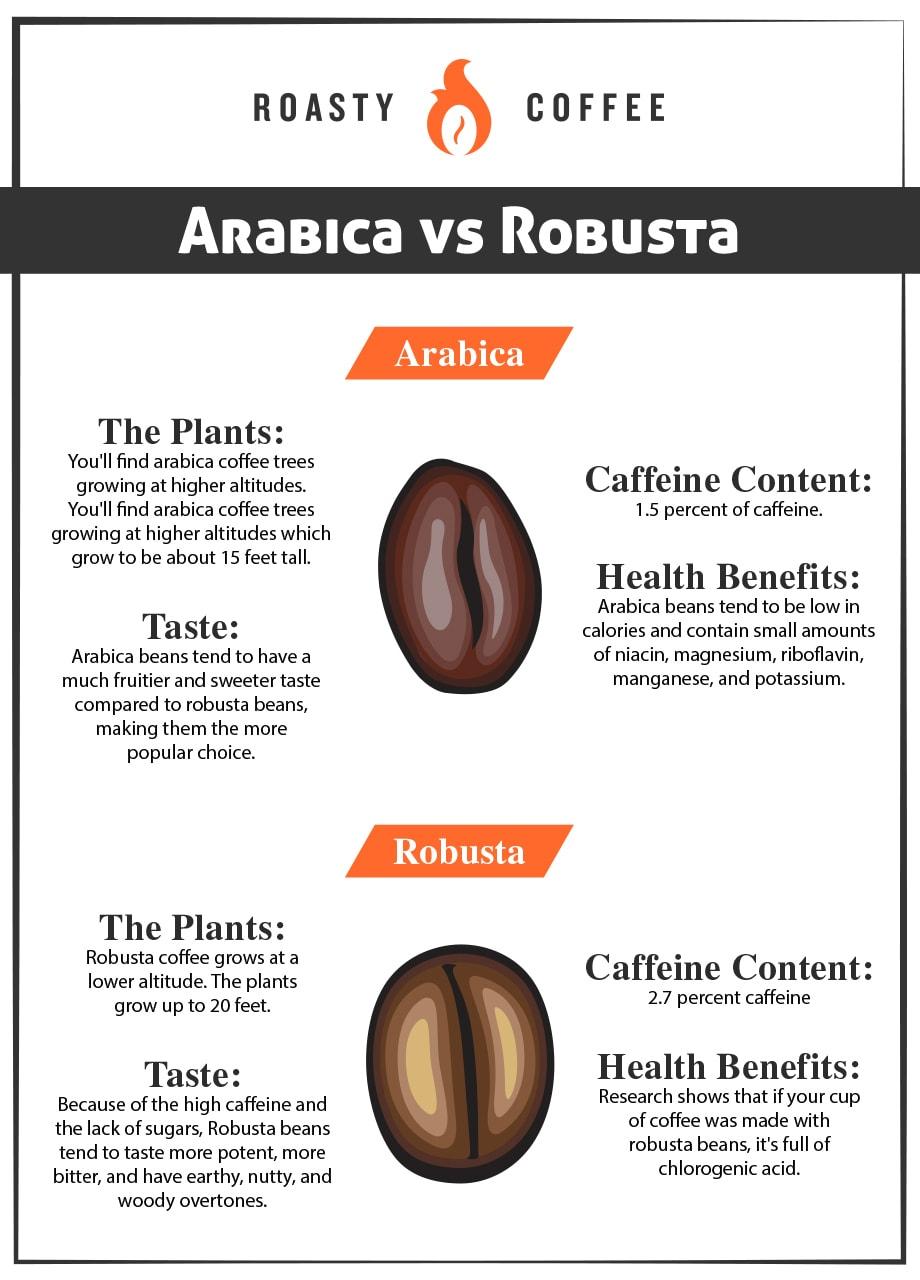 Arabica vs Robusta Infographic