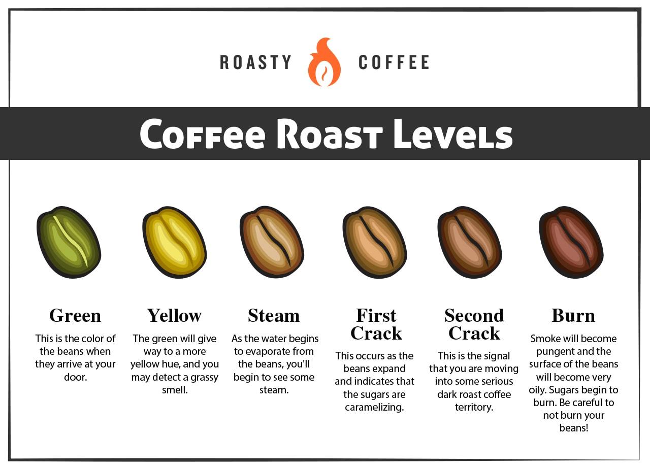 Coffee Bean Roast Levels Infographic
