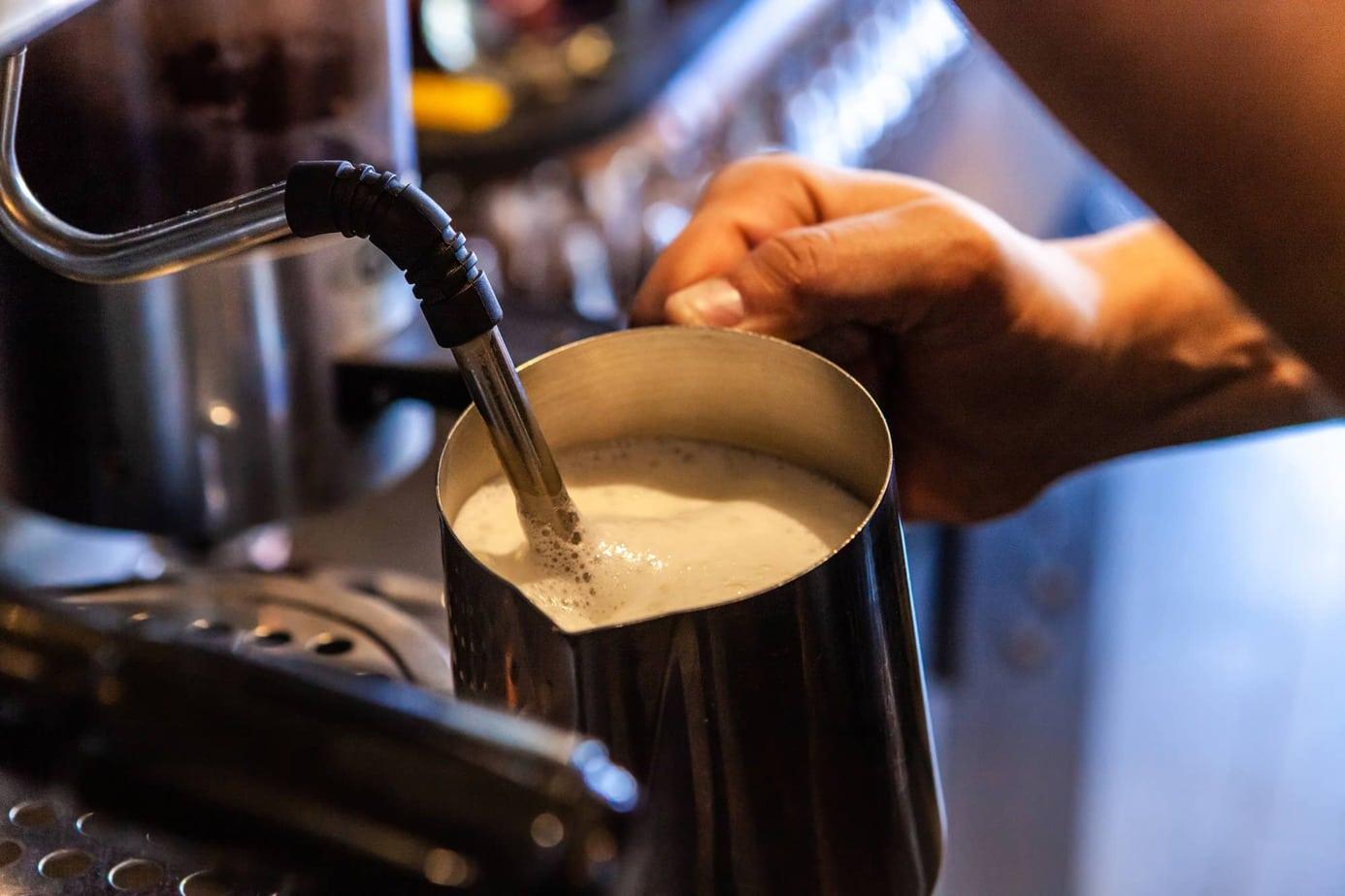 Standalone Milk Steamer