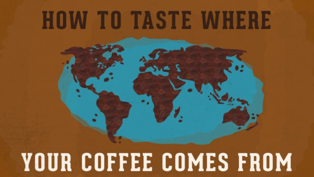 How to Taste Where Your Coffee Comes From