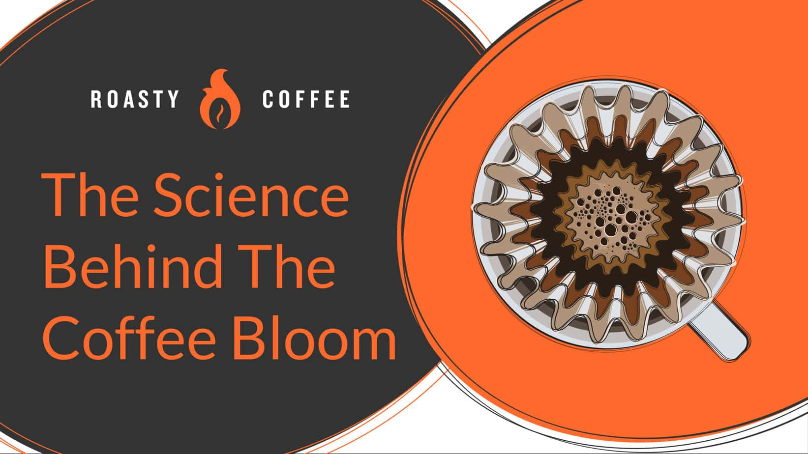 The Science Behind The Coffee Bloom