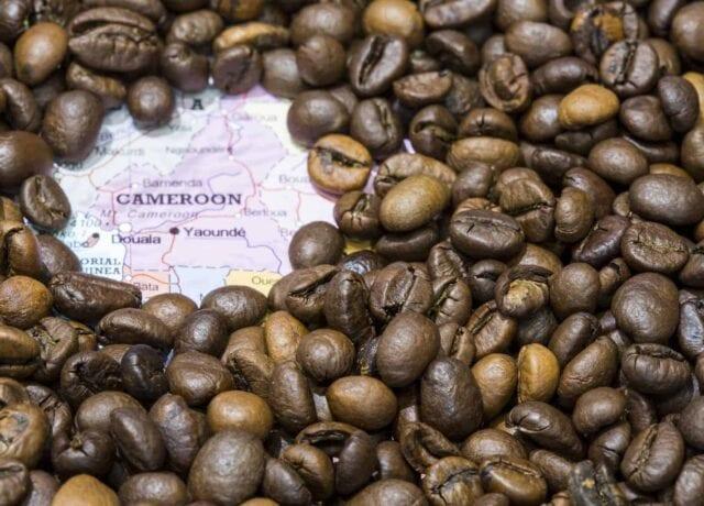 Cameroon Coffee