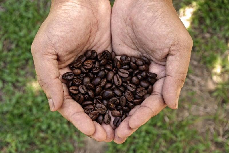 Best Costa Rican Coffee Maker – Chorreador Filters
