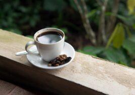 Kopi Luwak Coffee: Cat Poop Coffee