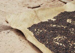 Madagascar Coffee